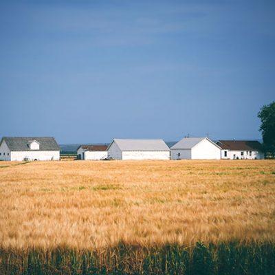 PSD consolidează proprietatea națională asupra terenurilor agricole